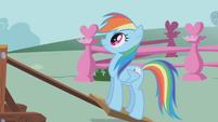 Rainbow Dash -Ready-- S01E04