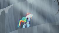 Rainbow looks at Pinkie S5E8