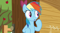 Rainbow pretending to be surprised S8E20