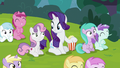 "Rarity ""it's funny because it's true!"" S7E6.png"