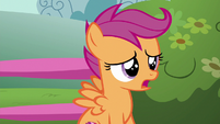 Scootaloo --we can just forget about-- S6E19