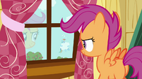 Scootaloo walking towards the window S3E06