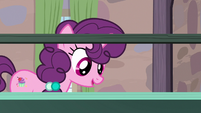 Sugar Belle looking at her new display case S7E8