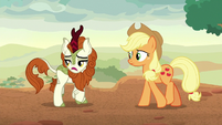 "Autumn Blaze ""that vow of silence"" S8E23"
