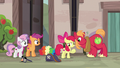 Big McIntosh leans in close to Apple Bloom S7E8.png
