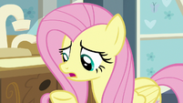 "Fluttershy ""somepony who can help you!"" S7E20"