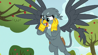 Gabby --from everypony in Ponyville!-- S6E19
