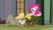 Pinkie Pie in Phonograph S2E18
