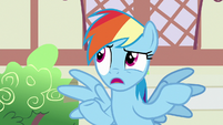 "Rainbow Dash ""another parasprite hype story"" S7E18"