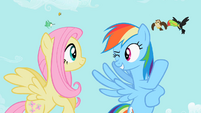 Rainbow Dash 'best of the litter' S2E07
