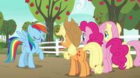 Rainbow Dash --that makes me an expert-- S6E18