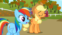 Rainbow Dash is stunned S1E13