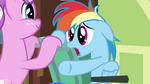 Rainbow Dash noooo S02E16