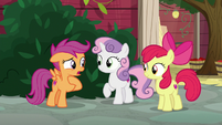 Scootaloo -Miss Cheerilee never lets us play- S8E12
