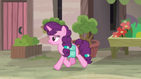 Sugar Belle trots past Scootaloo's hiding place S7E8