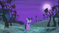 Twilight Sparkle walking alone S4E07