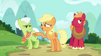 "Applejack ""to avoid anypony in the waitin' room"" S6E23"