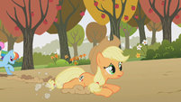 Applejack on the ground after tripping S1E13