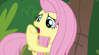 "Fluttershy ""shift your weight, Scout!"" S9E18"
