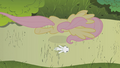 Fluttershy flying over Angel S1E7.png