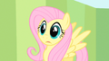 Fluttershy processing S1E20.png