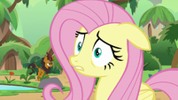 Fluttershy shocked by AJ's suggestion S8E23