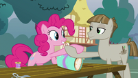 Pinkie Pie and Mudbriar shaking hooves S8E3