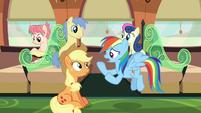 Rainbow Dash --what do we do now--- S6E18