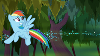 Rainbow dodging the swamp geysers S8E17
