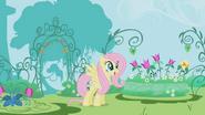 S01E03 Fluttershy w ogrodzie