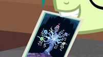 Sandbar holding picture of Tree of Harmony S8E22