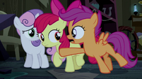 Scootaloo stopping Apple Bloom S5E6