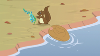 Squirrel picking foal's-breath flowers S8E23