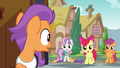 Tender Taps looking at Cutie Mark Crusaders S6E4.png