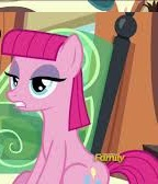 The Gift Of The Maud Pie