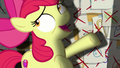 "Apple Bloom ""I looked all over town"" S6E4.png"
