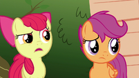 Apple Bloom --why in tarnation would you promise-- S6E19