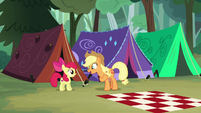 "Applejack ""Winsome Falls by tomorrow!"" S7E16"