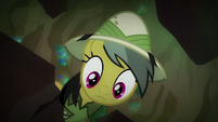 Daring Do looking down S6E13
