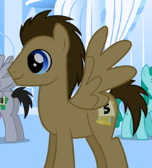 Dr. Whooves pegaso