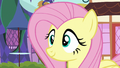 Fluttershy proud of herself S7E14.png