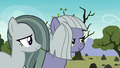 Limestone and Marble smiling at Pinkie S8E3.png