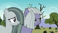 Limestone and Marble smiling at Pinkie S8E3