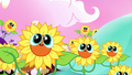 Living sunflowers smiling cutely S5E13.png