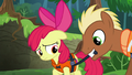 Meadow Song tightening Apple Bloom's life jacket S6E4.png