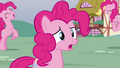Pinkie Pie 'which one of us is the real Pinkie Pie' S3E03.png