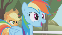 Rainbow Dash -A chance to audition for The Wonderbolts- S01E03