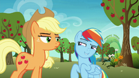 Rainbow Dash looking slyly at Applejack S8E5