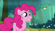 S04E18 Pinkie ogląda kolibra