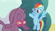 S05E19 Rainbow Dash znajduje wskazówkę Shining Armora